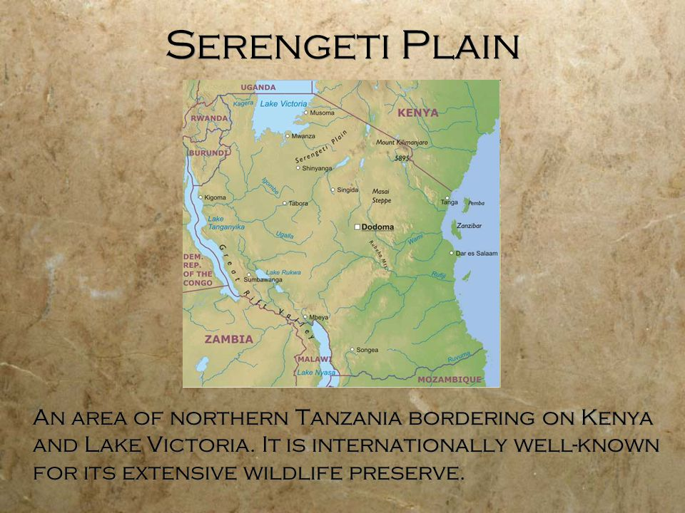 10 Serengeti Geography of Africa