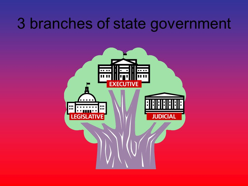 three branches of texas government