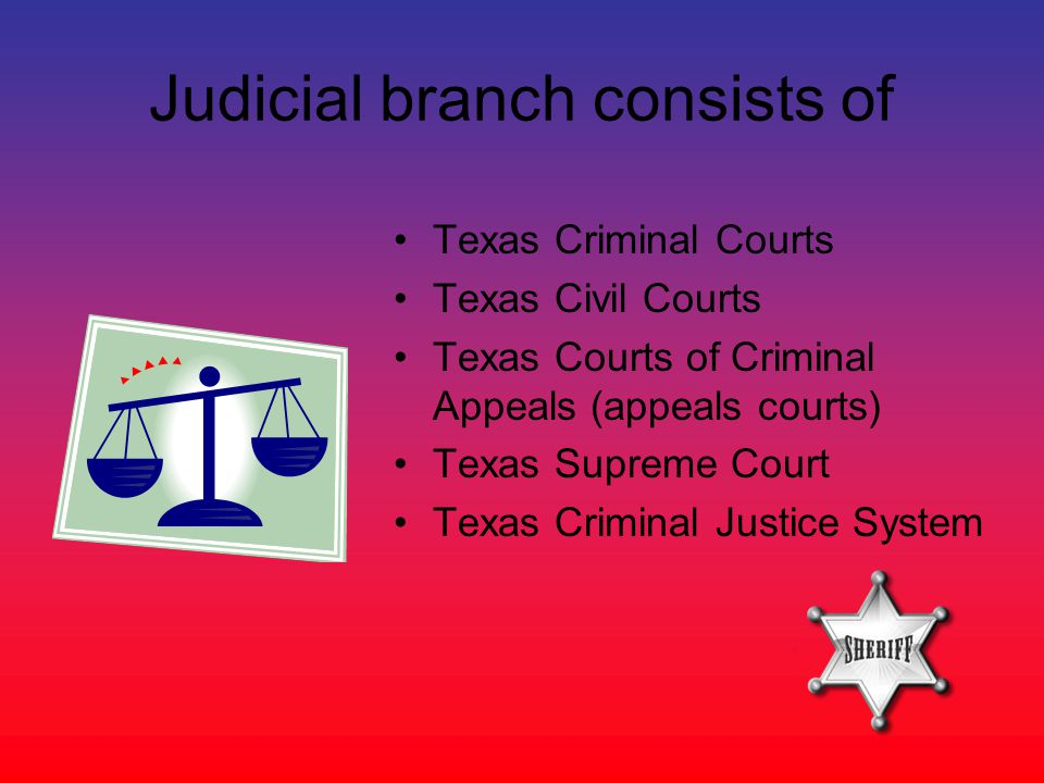 texas three branches of government