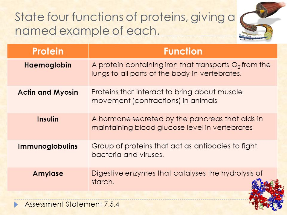Chapter 14 proteins chemistry 20. Function of proteins fibrinogen.