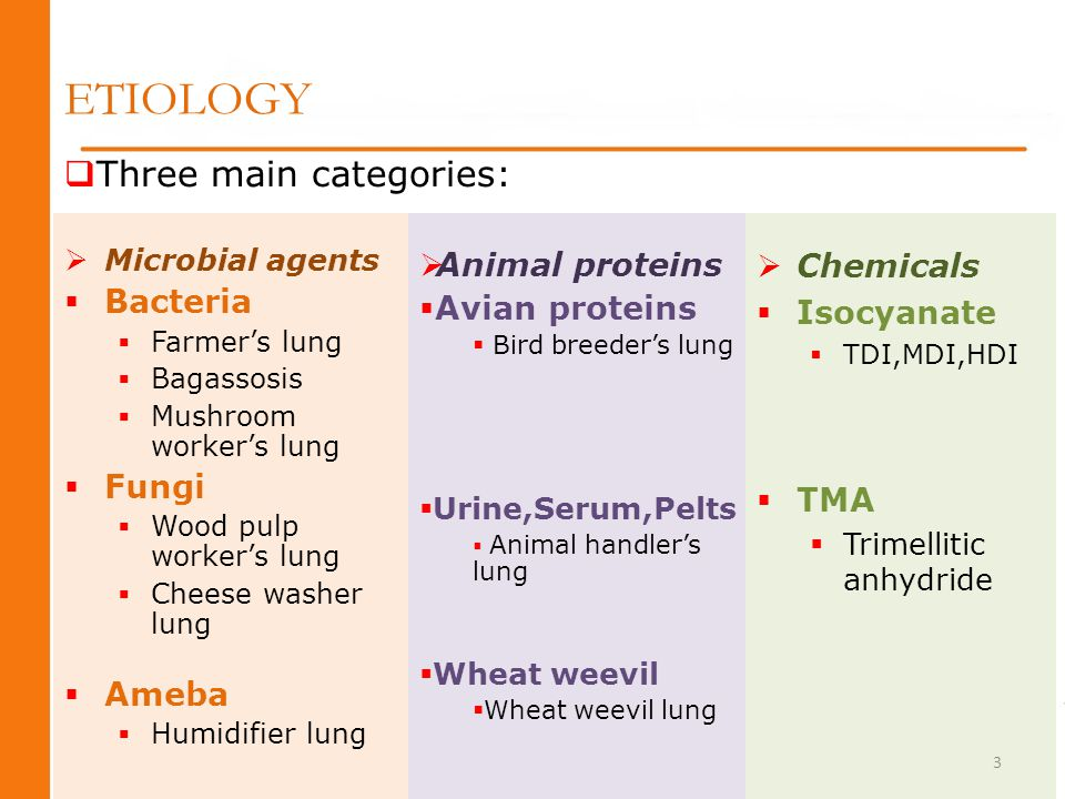 ETIOLOGY Three main categories: Animal proteins Chemicals Bacteria