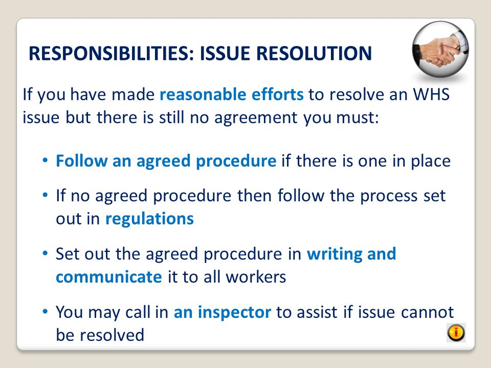 RESPONSIBILITIES: ISSUE RESOLUTION
