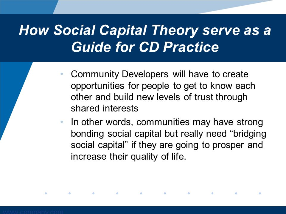 social capital a theory of social structure and action pdf