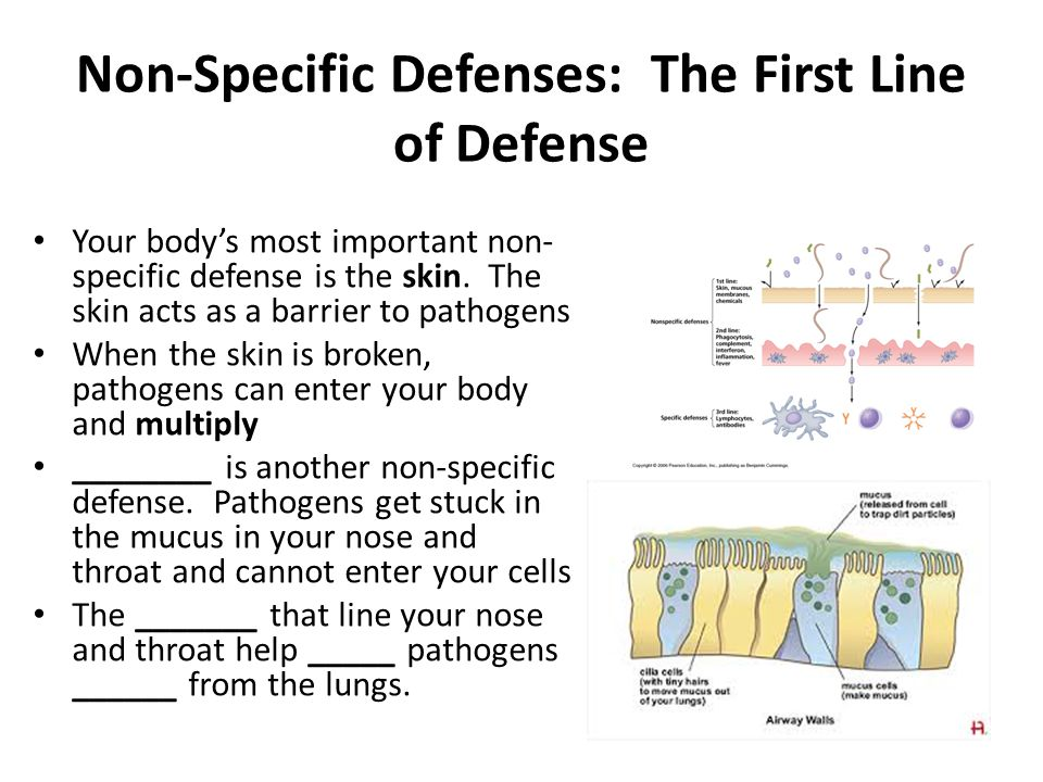 Non-Specific Defenses: The First Line of Defense