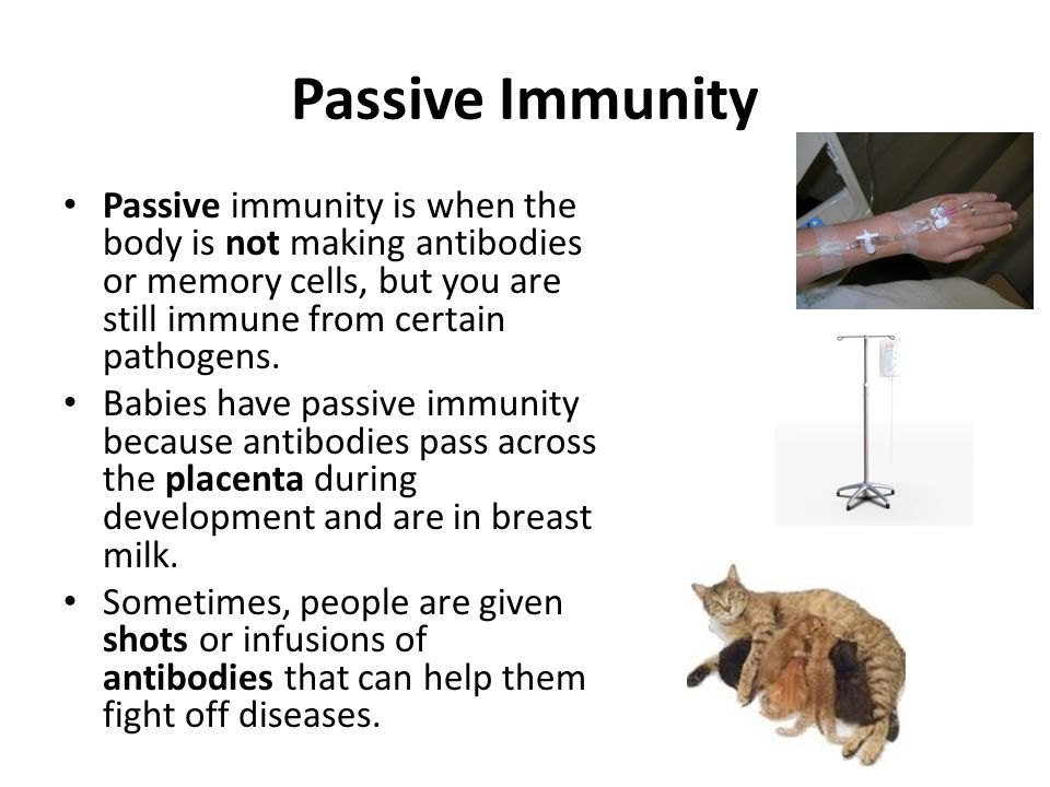 Passive Immunity Passive immunity is when the body is not making antibodies or memory cells, but you are still immune from certain pathogens.