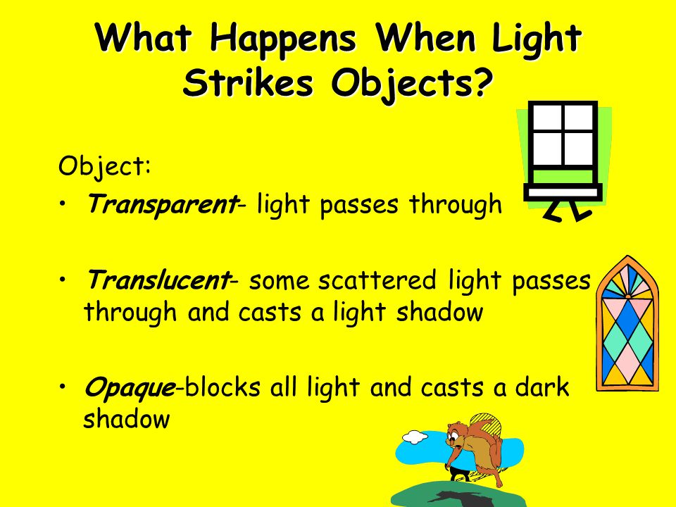 What Happens When Light Strikes Objects
