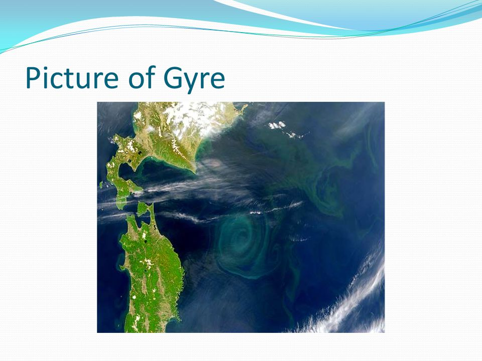 Picture of Gyre