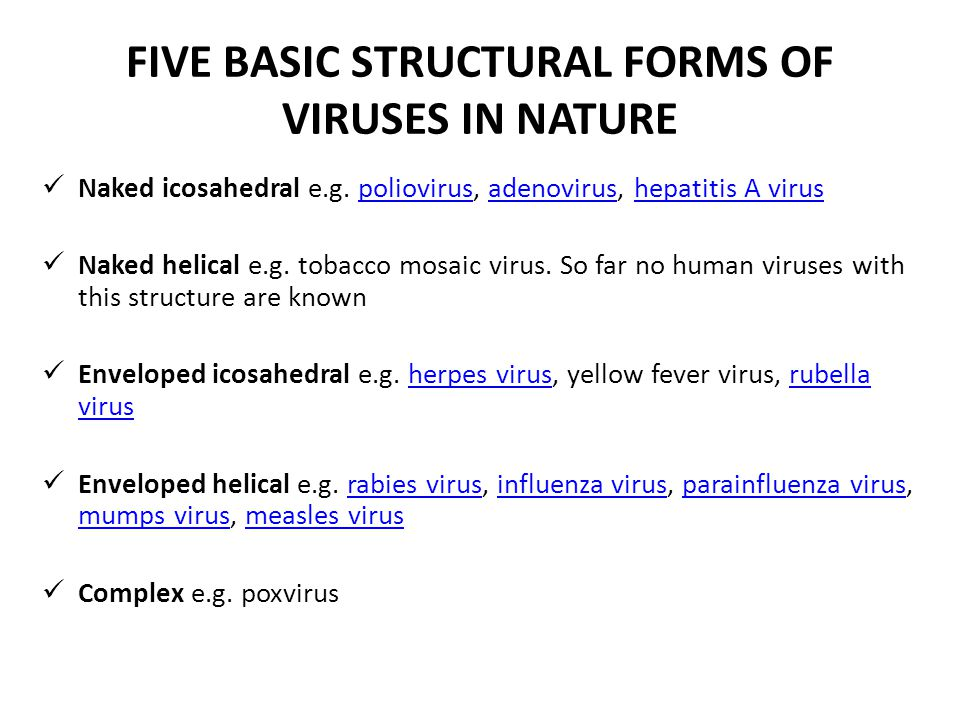FIVE BASIC STRUCTURAL FORMS OF VIRUSES IN NATURE