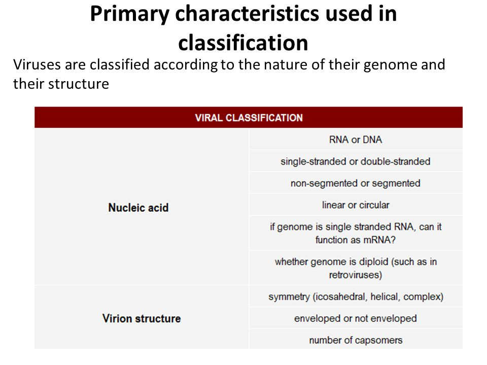 Primary characteristics used in classification