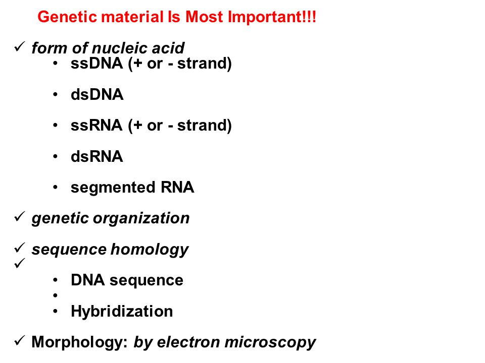 Genetic material Is Most Important!!!