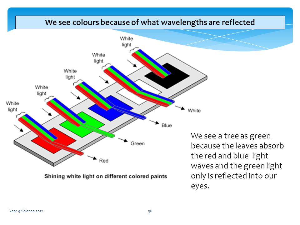 Physics Year 9 Waves Science Ppt Video Online Download