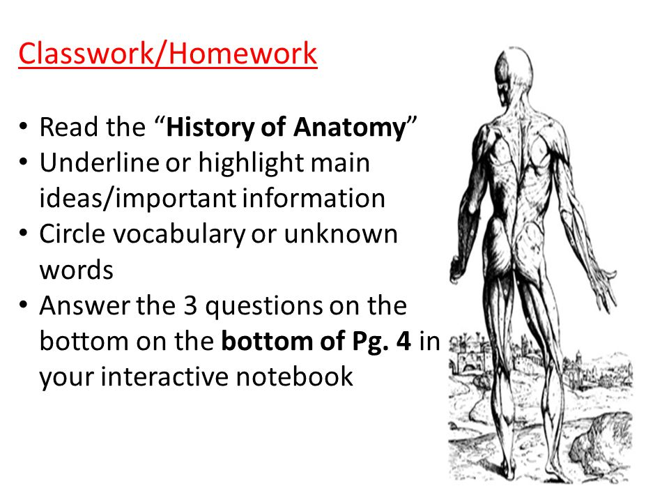 Ch. 1 Medical and Applied Science Vocab - ppt download