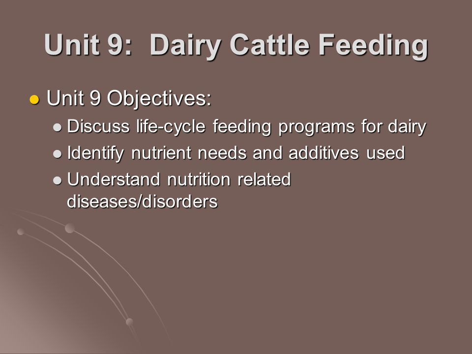 Unit 9: Dairy Cattle Feeding - ppt video online download