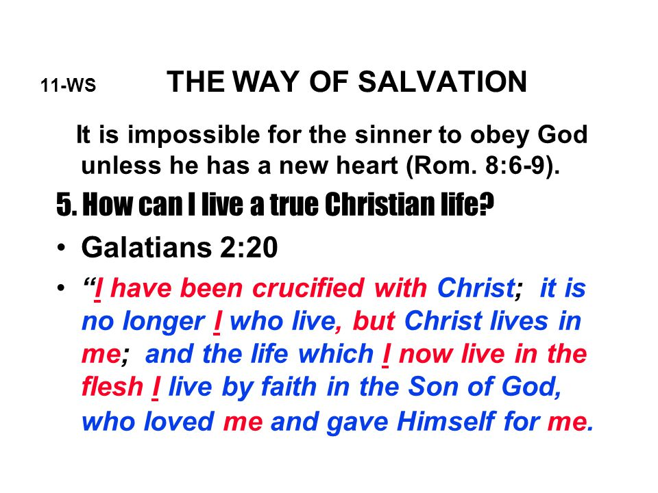 11-WS THE WAY OF SALVATION