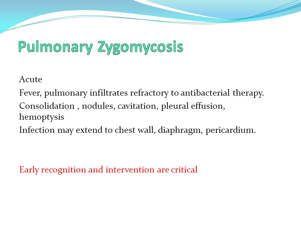 Pulmonary Zygomycosis