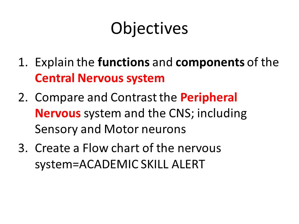 Neurons Hormones And The Brain Ppt Download