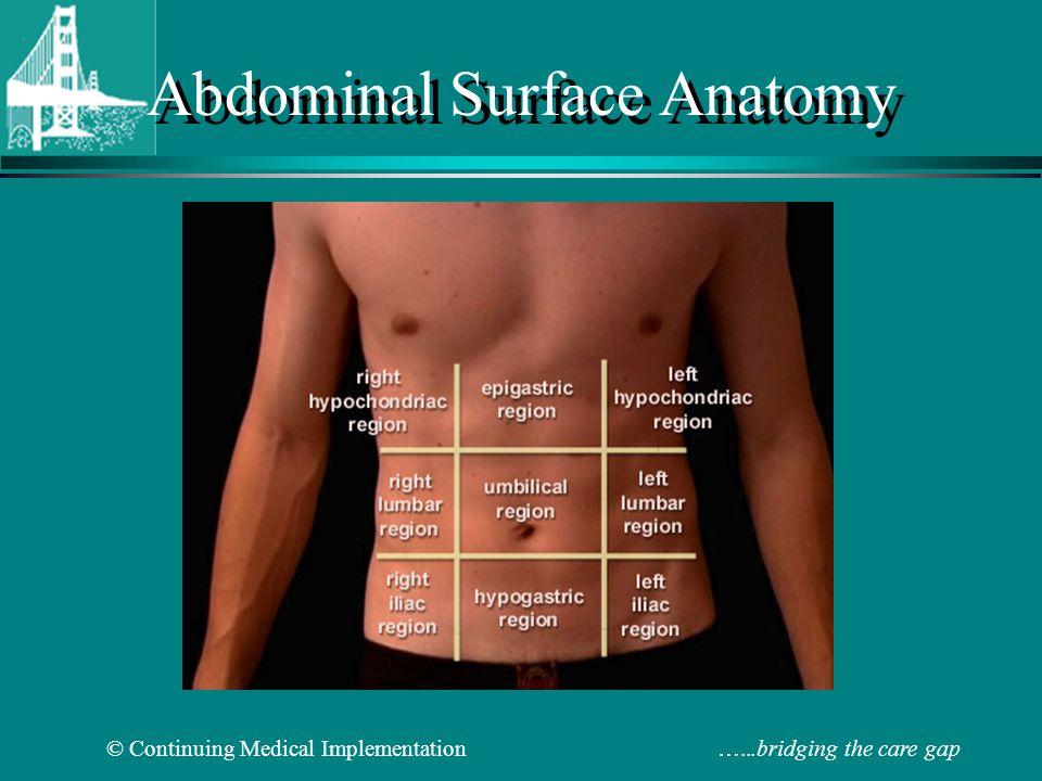 Abdominal Physical Exa...