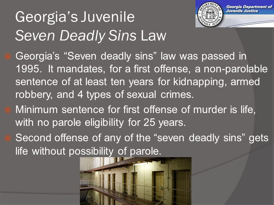 Georgia governments  - ppt video online download
