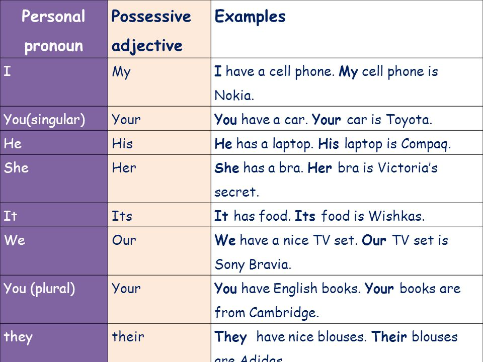 Possessive Adjectives And Possessive Pronouns Ppt Video