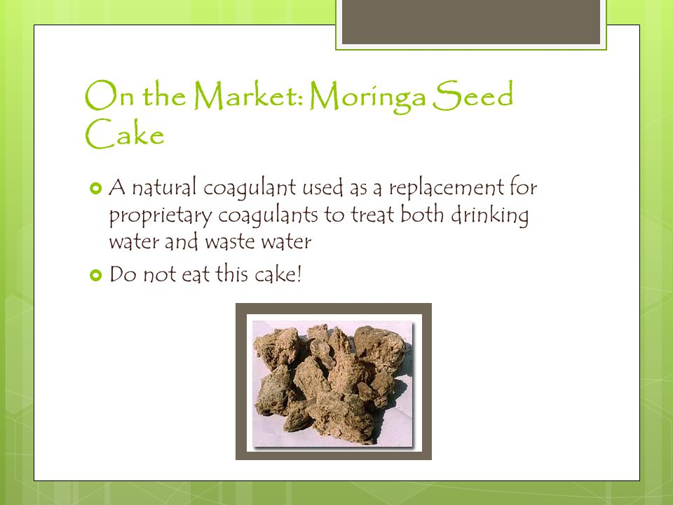Moringa The Miracle Tree - ppt video online download