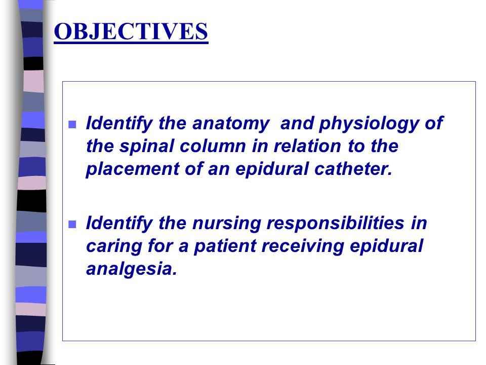 Epidural Analgesia Drfatma Al Dammas Ppt Video Online Download