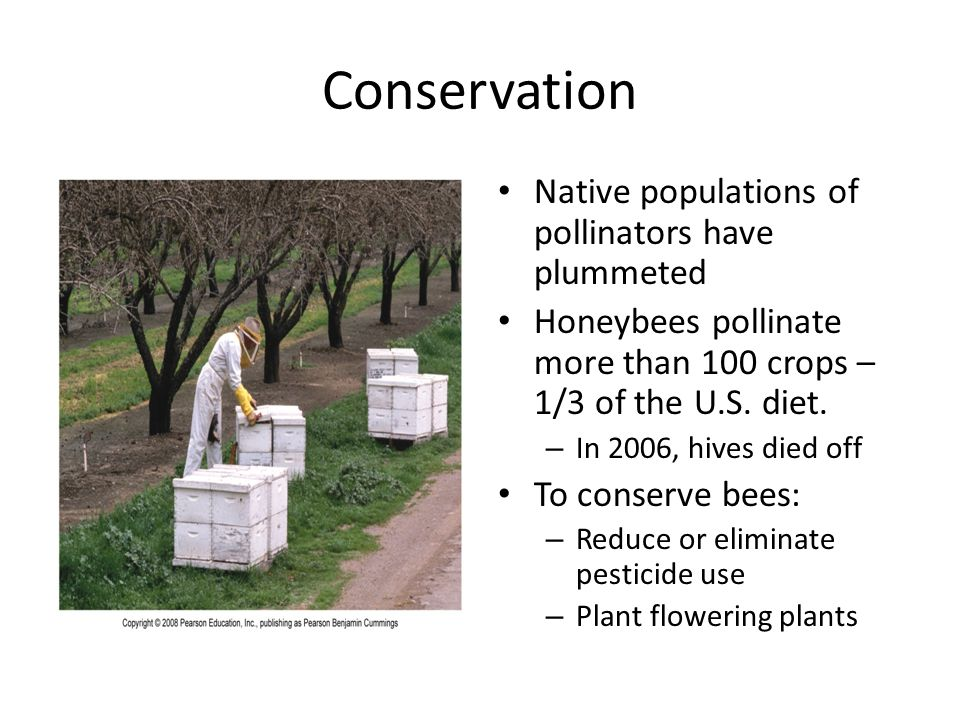 Conservation Native populations of pollinators have plummeted