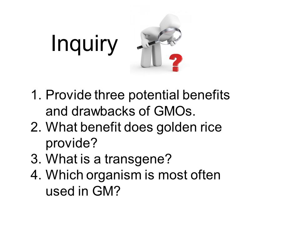 Inquiry Provide three potential benefits and drawbacks of GMOs.