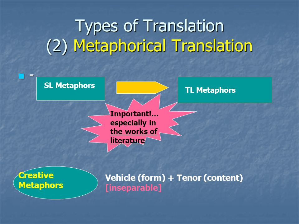types of translation in literature