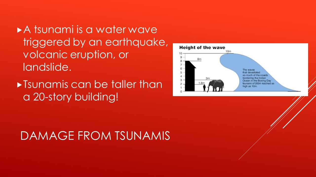 A tsunami is a water wave triggered by an earthquake, volcanic eruption, or landslide.