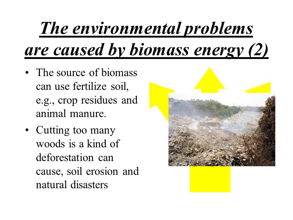 The environmental problems are caused by biomass energy (2)