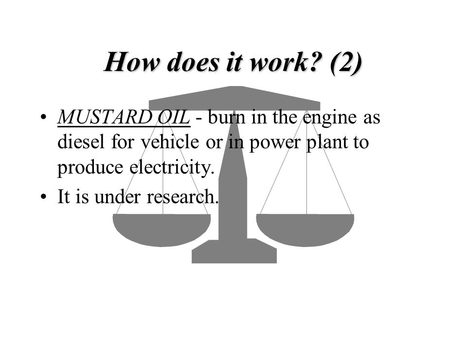 How does it work (2) MUSTARD OIL - burn in the engine as diesel for vehicle or in power plant to produce electricity.