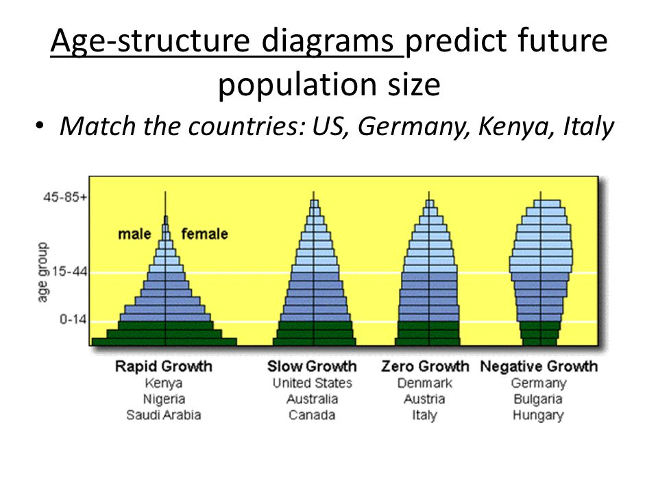 Populations Chapter 5 In Text Ppt Download