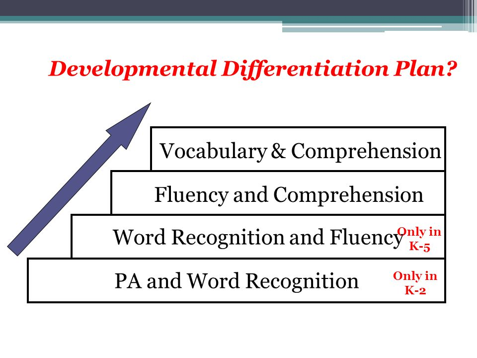 Developmental Differentiation Plan