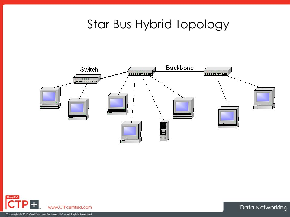 Data networking ppt download 9 star bus hybrid topology ccuart Image collections