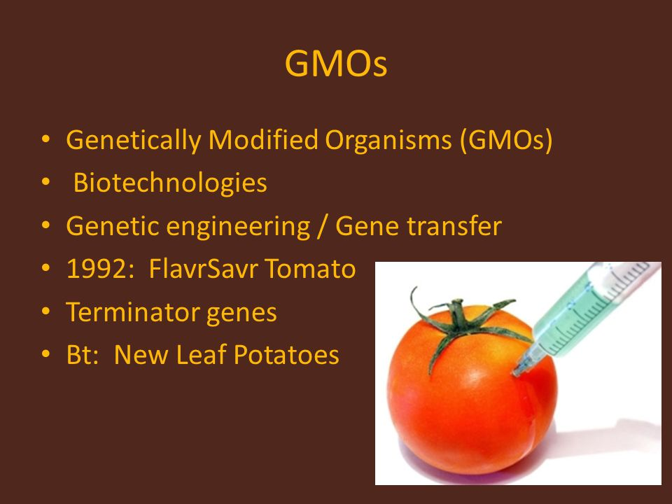 GMOs Genetically Modified Organisms (GMOs) Biotechnologies