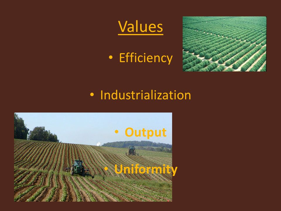 Values Efficiency Industrialization Output Uniformity