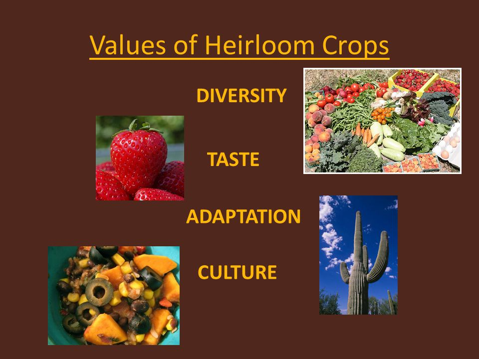 Values of Heirloom Crops