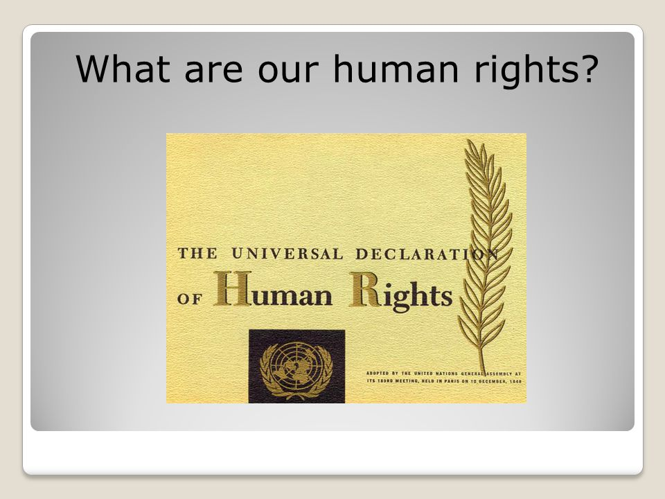 What are our human rights