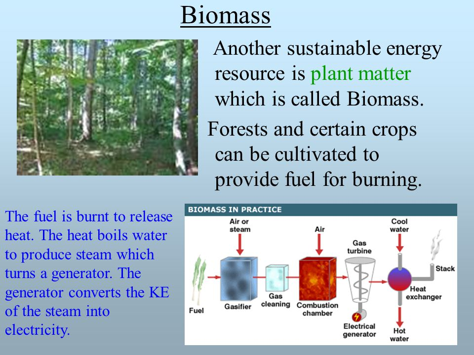 Biomass Another sustainable energy resource is plant matter which is called Biomass.