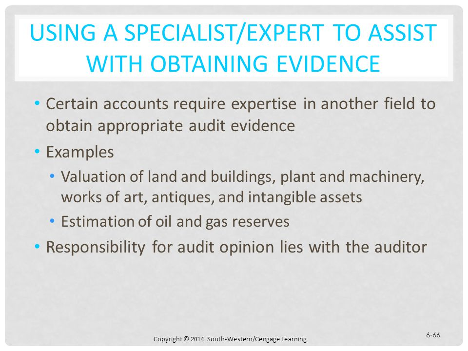 using a specialistexpert to assist with obtaining evidence