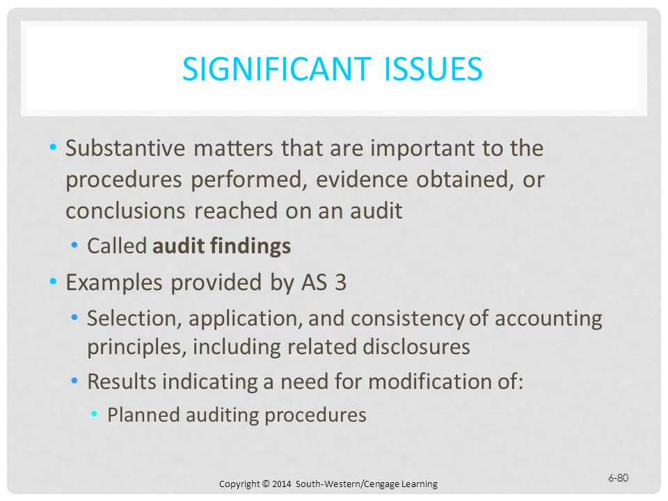 significant issues substantive matters that are important to the procedures performed evidence obtained or