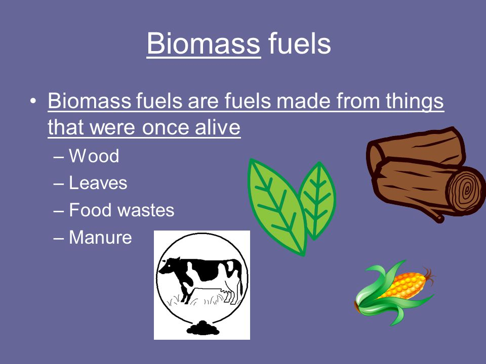 Biomass fuels Biomass fuels are fuels made from things that were once alive. Wood. Leaves. Food wastes.