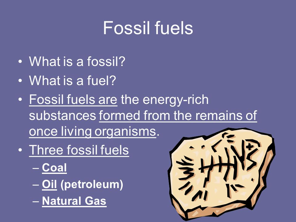 Fossil fuels What is a fossil What is a fuel
