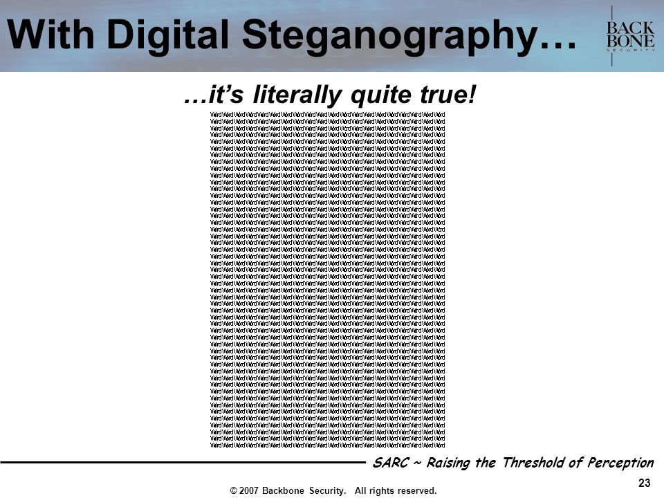 With Digital Steganography…