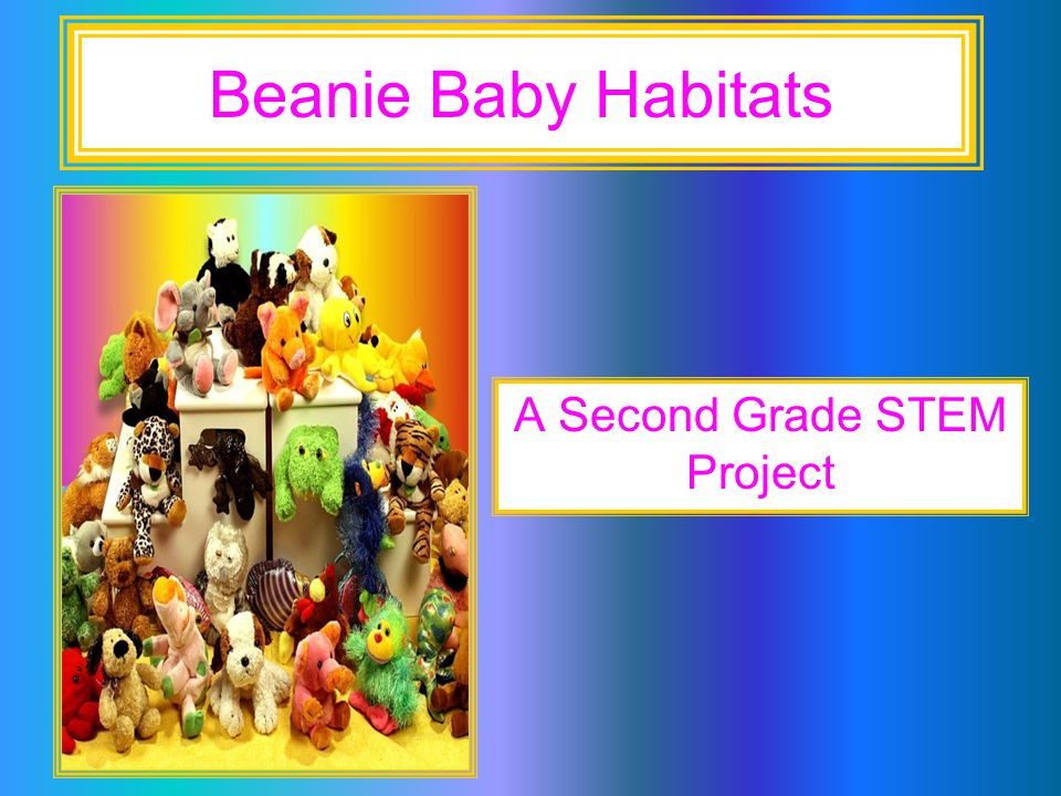 A Second Grade Stem Project Ppt Download
