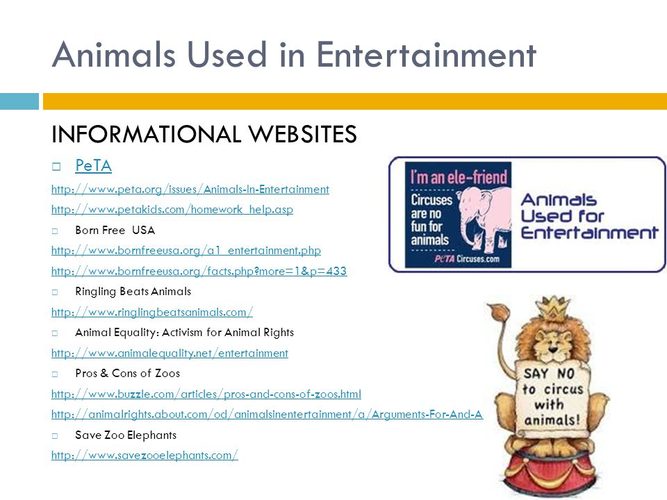 animals in the circus pros and cons