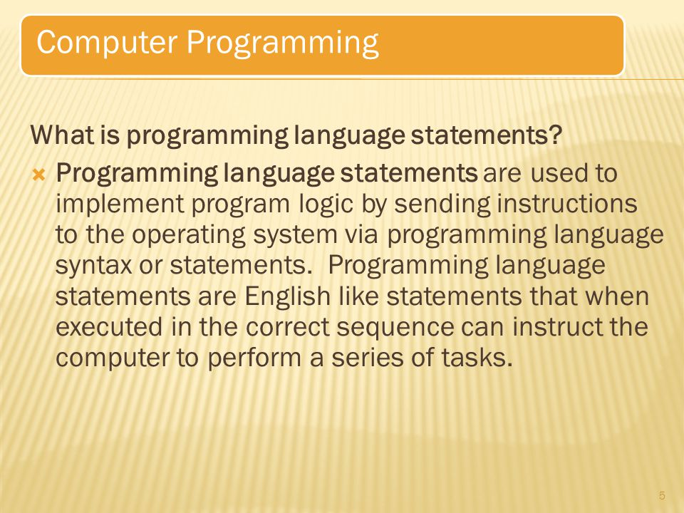 Computer Programming What is programming language statements