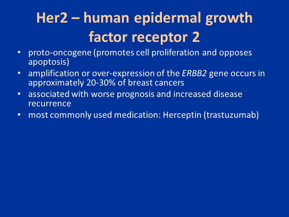 Her2 – human epidermal growth factor receptor 2