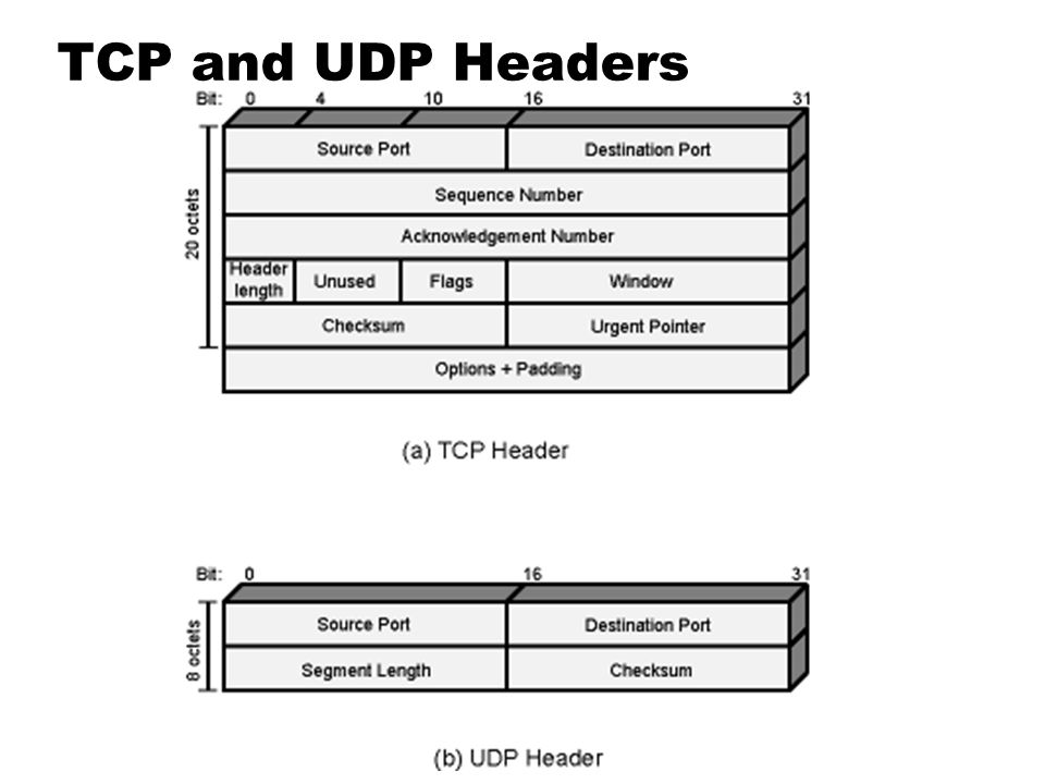 TCP and UDP Headers