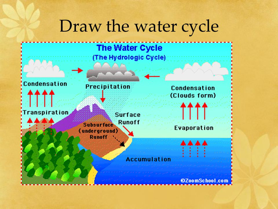 Cycles in nature ppt video online download 7 draw the water cycle ccuart Images